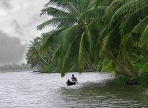Backwaters in Valiyaparamba