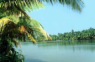 Backwaters in Chithari