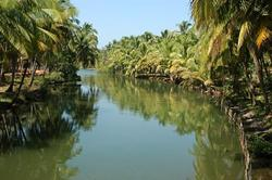 Backwaters in Padanna