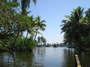 Backwaters in Thiruvallam