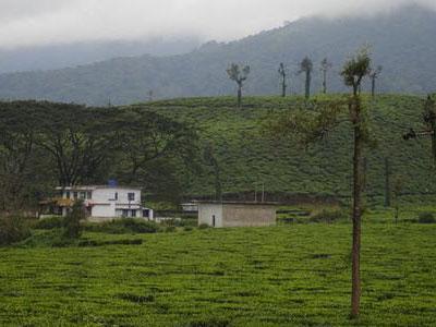 Kottancheri Hills- Tourist Place in Kasargod