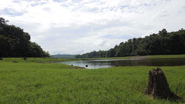 Thattekkad Bird Sanctuary - The first bird sanctuary in Kerala