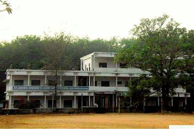 St. Johns Higher Secondary School Kavalangad, Nellimattom - Courses, Facilities and Contact Details
