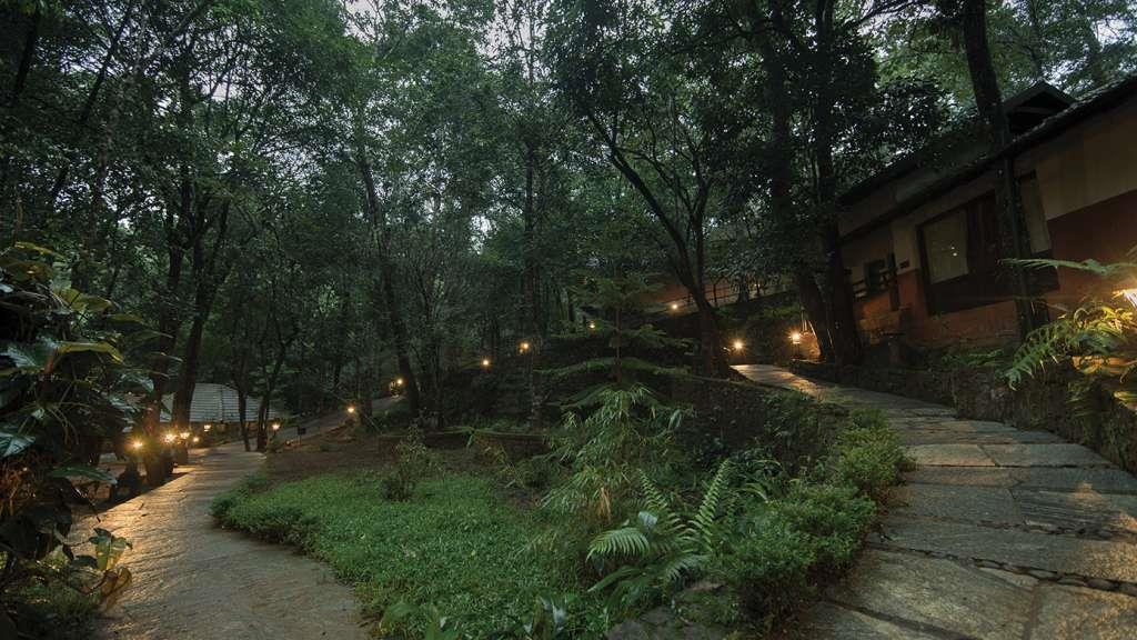 vythiri-nature-resort-wayanad