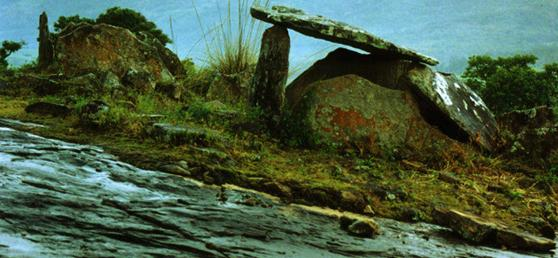 http://www.spiderkerala.net/attachments/Resources/3580-212136-Dolmens-in-marayoor.jpg