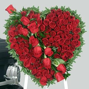 Valentines day special gifts sms articles girls love flower very much valentine flowers are a very traditional and extremely effective valentine gift for her but giving a flower on valentines day negle Choice Image