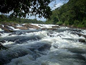 Vazhachal waterfall